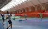 badmintone_1